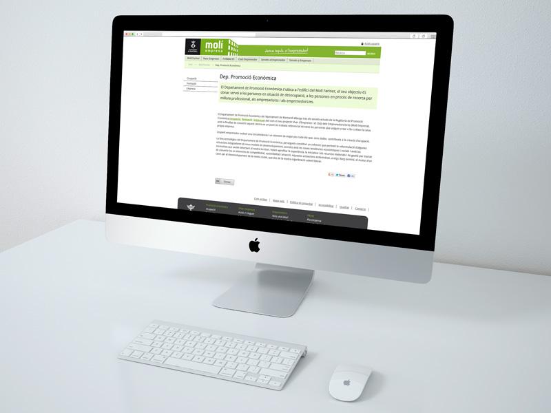 Disseny Web Moli Empresa, Martorell
